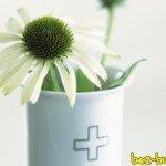 Травы и витамины для улучшения настроения