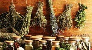 Целебные травы для лечения псориаза
