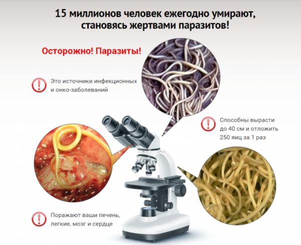 Лечение паразитов народными средствами