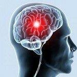 Продукты стимулирующие работу мозга